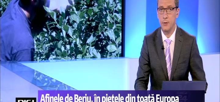 Afinele de Beriu, pe pieţele de desfacere din toată Europa